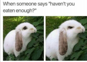 """Funny, You, and Enough: When someone says """"haven't you  eaten enough?"""""""