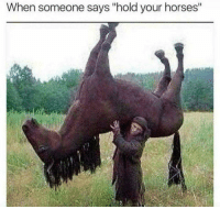 "Horses, Hold, and Someone: When someone says ""hold your horses"""