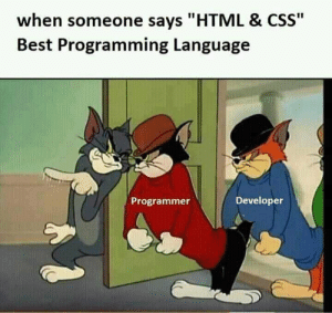 """Call up the gang, they come get you…: when someone says """"HTML & CSS""""  Best Programming Language  Developer  Programmer Call up the gang, they come get you…"""