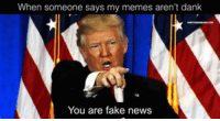 memes Sad!: When someone says my memes aren't dank  You are fake news memes Sad!