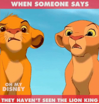 Lion King: WHEN SOMEONE SAYS  OH MY  DISNEY  THEY HAVEN'T SEEN THE LION KING