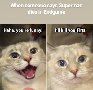 Funny, Superman, and Haha: When someone says Superman  dies in Endgame  'll kill you First  Haha, you're funny! If this doesn't take off you already know what I'm gonna do