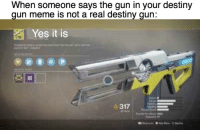 destiny: When someone says the gun in your destiny  gun meme is not a real destiny qun:  Yes it is  317  Tt