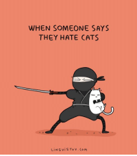 Cats, They, and Hate: WHEN SOMEONE SAYS  THEY HATE CATS