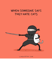 Memes, 🤖, and Ling: WHEN SOMEONE SAYS  THEY HATE CATS  LiNG v i S To v Co M Right? :D