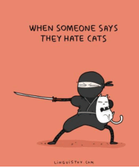 Cats, Memes, and 🤖: WHEN SOMEONE SAYS  THEY HATE CATS  LiNG vis To v Co M (Teemu)