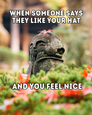 awesomacious:  Thanks for the feels kind stranger: WHEN SOMEONE SAYS  THEY LIKE YOUR HAT  AND YOU FEEL NICE  Owasabitool photography awesomacious:  Thanks for the feels kind stranger