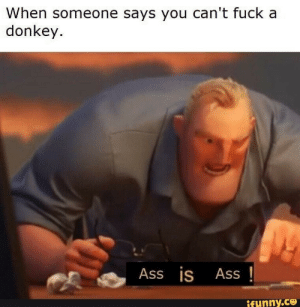 Ass is ass by PulseOnReddit FOLLOW 4 MORE MEMES.: When someone says you can't fuck a  donkey.  Ass is  Ass  ifynny.co Ass is ass by PulseOnReddit FOLLOW 4 MORE MEMES.