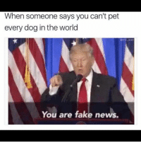 🐶🐶🐶 . . . trump trumptrain trumpnation presidenttrump maga makeamericagreatagain quote president usa unitedstates liberal liberallogic conservative republican collegerepublicans tpusa democrat politics political follow4follow: When someone says you can't pet  every dog in the world  Omo-wad  You are fake news. 🐶🐶🐶 . . . trump trumptrain trumpnation presidenttrump maga makeamericagreatagain quote president usa unitedstates liberal liberallogic conservative republican collegerepublicans tpusa democrat politics political follow4follow