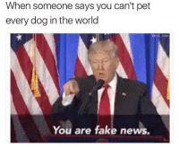 Me😿irl: When someone says you can't pet  every dog in the world  Como wad  You are fake news. Me😿irl