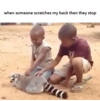 Sleeping, Girl Memes, and Friendship: when someone scratches my back then they stop The most annoying part when someone scratches your back is that they want you to return the favor... that's why you gotta pretend that ur sleeping or just thank them for their service and end the friendship.