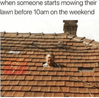 Funny, Memes, and The Weekend: when someone starts mowing their  lawn before 10am on the weekend @funny makes me laugh everyday 😂