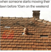 Dank, The Weekend, and 🤖: when someone starts mowing their  lawn before 10am on the weekend The nerve of these people