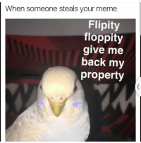 When you steal a meme about stealing memes: When someone steals your meme  Flipity  floppity  give me  back my  property When you steal a meme about stealing memes