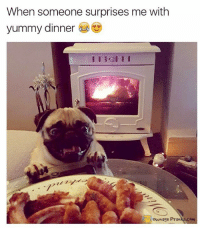 Memes, Prank, and Joyful: When someone surprises me with  yummy dinner  ownage Pranks.com Pure joy 😂  Like our page for MORE funny pics! => OwnagePranks (Photo credit: @lucasirelandspug on Instagram)