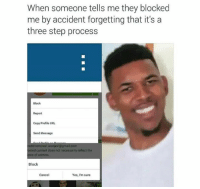 Memes, Gmail, and gmail.com: When someone tells me they blocked  me by accident forgetting that it's a  three step process  Block  Report  Copy Profile URL  Send Message  edit/  osted content does not necessarily reflect the  ws of admins  aranjevi@gmail.com  Block  Cancel  Yes, I'm sure