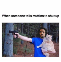 Say hello to my little friend 🐱: When someone tells muffins to shut up Say hello to my little friend 🐱