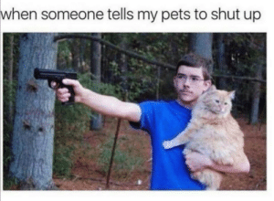 Is it just me?: when someone tells my pets to shut up Is it just me?