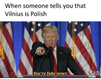 Don't spread the fake news folks.: When someone tells you that  Vilnius is Polish  You're fake news  MEMES Don't spread the fake news folks.
