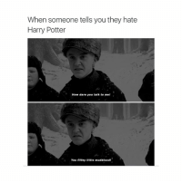 me for real don't you dare insult hp: When someone tells you they hate  Harry Potter  How dare you talk to me!  You filthy little mudblood! me for real don't you dare insult hp