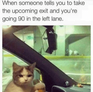 Are fucking serious Greg?!?!: When someone tells you to take  the upcoming exit and you're  going 90 in the left lane. Are fucking serious Greg?!?!