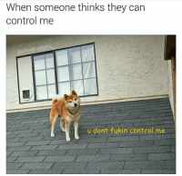 Memes, Control, and 🤖: When someone thinks they can  control me  @chaos.reigns  u dont fukin control me Can't stop won't stop 😤 | 👉 @chaos.reigns_ for more