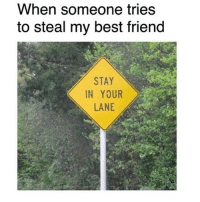Best Friend, Memes, and Best: When someone tries  to steal my best friend  STAY  IN YOUR  LANE Tag ur bestie 👯♂️