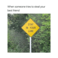 Best Friend, Best, and Girl Memes: When someone tries to steal your  best friend  STAY  IN YOUR  LANE haha no