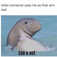 Funny, Smh, and Rest: when someone uses me as their arm  rest  can u not Tag this person smh