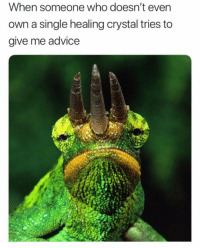 Advice, Funny, and Memes: When someone who doesn't evern  own a single healing crystal tries to  give me advice 41 Funny Memes That Will Tickle Your Funny Bone