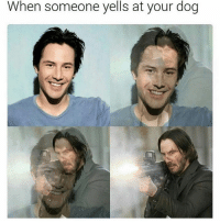 you're dead to me: When someone yells at your dog you're dead to me