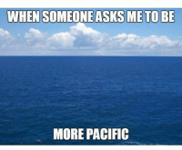 Memes, 🤖, and Pacifism: WHEN SOMEONEASKSME TO BE  MORE PACIFIC