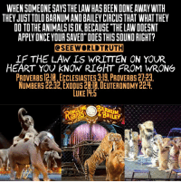 "Memes, Ecclesiastes, and Eternity: WHEN SOMEONESAYS THE LAW HAS BEEN DONE AWAY WITH  THEY JUST TOLD BARNUMANDBAILEY CIRCUSTHAT WHATTHEY  DO TOTHEANIMALSISOK BECAUSE ""THELAWDOESNT  APPLY ONCE YDURSANED"" DOES THIS SOUND RIGHT?  CSEE WORLD TRUTH  IF THE LAN IS WRITTEN ON YOUR  HEART YOU KNOW RIGHT FROM WRONG  PROVERBS 12la ECCLESIASTES 3:19. PROVERBS 27-23  NUMBERS 22:32.EXODUS20:14, DEUTERONOMY 22:4  LUKE lih5 👇👇READ⤵⤵⤵Will you see Yeshua ""Jesus"" is the living Torah? So is the law written on your heart? Walk in the spirit👀 The Torah is written to protect you and me and all living things. Circumcision of the heart and a new heart is in Deuteronomy... The Torah. Nothing new, except the prophet in the likeness of Moses which was Jesus would teach us the truth as Isaiah says listen to him and all he said! When we receive the spirit, I will CAUSE us to walk on the ways of God, so that no man can boast when they do walk it out!!! Be careful to walk in the ways of the spirit (new covenant Ezekiel 36:26-27) The church perverts his words so that you can't see the true doctrine in the gospels...... 🔥Even an animal is to rest on sabbath and not forced to work👀 Is this law also done away with? Oh yeah the church says ""Jesus is the eternal sabbath"" way out of context. He is our eternal peace to all who love him and obey his fathers commandments.....shalom"