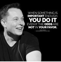 Goals, Memes, and Never: WHEN SOMETHING IS  IMPORTANT ENOUGH,  YOU DO IT  EVEN IF THE ODDS ARE  NOT IN YOUR FAVOR. I was never set up for success, I've just worked a lot harder than most to make my goals happen🙌🏼 https://t.co/kgevZ4Ko6p