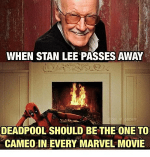 In honor of my childhood hero : (: WHEN STAN LEE PASSES AWAY  DEADPOOL SHOULD BE THE ONE TO  CAMEO IN EVERY MARVEL MOVIE In honor of my childhood hero : (