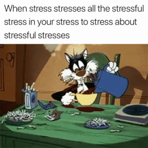 All The, Stress, and Did: When stress stresses all the stressful  stress in your stress to stress about  stressful stresses Did I mention the stress? 😂