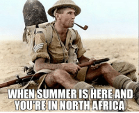 Memes, Summer, and 🤖: WHEN SUMMER IS HEREAND  YOU'RE IN NORTH  FRICA ww2 northafrica britishcommonwealth newzealand myownsummer