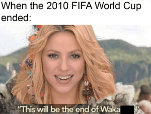 Fifa, World Cup, and Fifa World Cup: When the 2010 FIFA World Cup  ended  This will be the end of Wäka me_irl