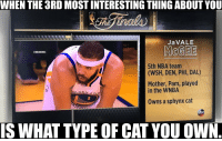 Abc, Nba, and WNBA (Womens National Basketball Association): WHEN THE 3RD MOSTINTERESTING THING ABOUT YOU  JaVALE  McGEE  @NBAMEMES  5th NBA team  (WSH, DEN, PHI, DAL)  Mother, Pam, played  in the WNBA  OLDEN  Owns a sphynx cat  abC  IS WHAT TYPE OF CAT YOU OWN ABC did JaVale dirty. #WarriorsNation https://t.co/b2VJptDNfV