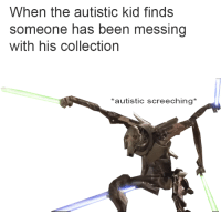 <p>General Autist</p>: When the autistic kid finds  someone has been messing  with his collection  *autistic screeching* <p>General Autist</p>