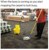 Boss, Carpet, and You: When the boss is coming so you start  mopping the carpet to look busy.