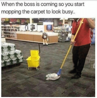 Funny, Bills, and Looking: When the boss is coming so you start  mopping the carpet to look busy..  MINIM Gotta pay the bills bruv 😏