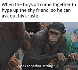 You got this bro: When the boys all come together to  hype up the shy friend, so he can  ask out his crush:  Apes together strong. You got this bro