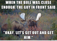 """Imgur, Okay, and Him: WHEN THE BULL WAS CLOSE  ENOUGI, THE GUY IN FRONT SAID  """"OKAY, LET'S GET OUT AND GET  HIM  made on imgur"""