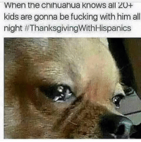 Lmaoo 😂😂😂  Follow us Mexican Problems: When the chihuahua knows all 20+  kids are gonna be fucking with him all  night Lmaoo 😂😂😂  Follow us Mexican Problems