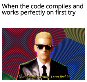 Code, Can, and The Code: When the code compiles and  works perfectly on first try  Something's wrong, I can feel it Generally there's something wrong