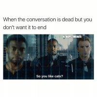 Cats, Memes, and Time: When the conversation is dead but you  don't want it to end  IG MARVEURUEACTS  So you like cats? 60% of the time it works every time. 😂