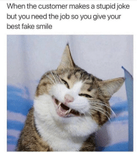 Fake, Memes, and Best: When the customer makes a stupid joke  but you need the job so you give your  best fake smile Hilarious 😁 Follow my bff @thespeckyblonde @thespeckyblonde @thespeckyblonde @thespeckyblonde ( pic credit @rexiecat 😸 )