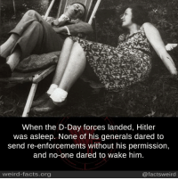 Facts, Memes, and Weird: When the D-Day forces landed, Hitler  was asleep. None of his generals dared to  send re-enforcements without his permission,  and no-one dared to wake him  weird-facts.org  @factsweird