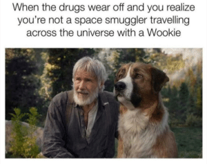 Don't do drugs kids… by raikxge MORE MEMES: When the drugs wear off and you realize  you're not a space smuggler travelling  across the universe with a Wookie Don't do drugs kids… by raikxge MORE MEMES
